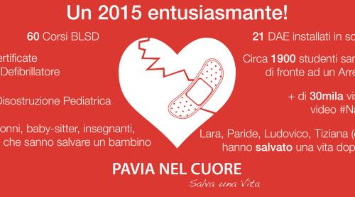 Infografica Risultati 2015 Pavia nel Cuore
